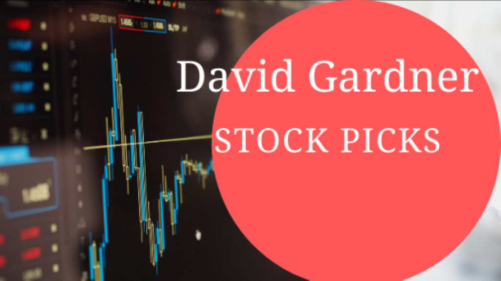 david-gardner-stock-picks